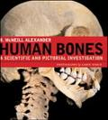 Human Bones A Scientific And Pictorial Investigation