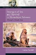 Strategies Of Sex And Survival Hamadryas Baboons Through A Female Lens