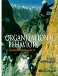 Organizational Behavior The Person-Organization Fit