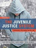 Juvenile Justice System : Delinquency, Processing, and the Law Plus MyCrimeKit
