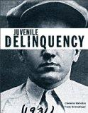 Juvenile Delinquency (The Justice Series)