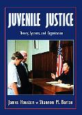 Juvenile Justice Theory, Systems, and Organization