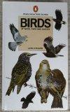 Birds of wood, park and garden