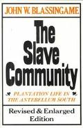 Slave Community Plantation Life in the Antebellum South