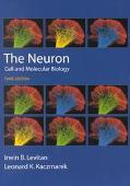 Neuron Cell and Molecular Biology