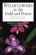 Wildflowers In The Field and Forest A Field Guide to the Northeastern United States
