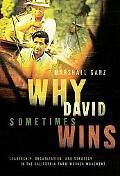 Why David Sometimes Wins