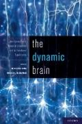 Dynamic Brain : An Exploration of Neuronal Variability and Its Functional Significancec