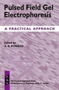 Pulsed Field Gel Electrophoresis A Practical Approach