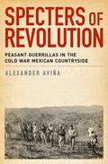 Specters of Revolution : Peasant Guerrillas in the Cold War Mexican Countryside
