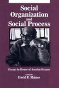 Social Organization and Social Process Essays in Honor of Anselm Strauss