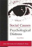 Social Causes of Psychological Distress (Social Institutions and Social Change)