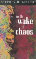 In the Wake of Chaos Unpredictable Order in Dynamical Systems