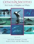 Cetacean Societies Field Studies of Dolphins and Whales