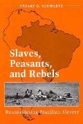Slaves,peasants+rebels