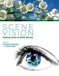 Scene Vision : Making Sense of What We See