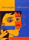Image+brain