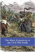 The Black Experience in the Civil War South (Reflections on the Civil War Era)