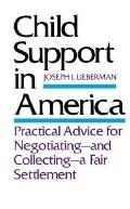 Child Support in America Practical Advice for Negotiating and Collecting a Fair Settlement