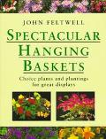 Spectacular Hanging Baskets