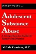 Adolescent Substance Abuse A Comprehensive Guide to Theory and Practice