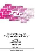 Organization of the Early Vertebrate Embryo