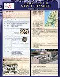 Survey of the New Testament Laminated Sheet