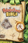 NIV Advanced Bible