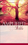 Amplified Bible/Containing the Amplified Old Testament and the Amplified New Testament