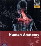 Human Anatomy. Frederic H. Martini, Michael J. Timmons, Robert B. Tallitsch