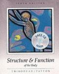 Structure+func.of the Body