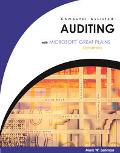 Computer Assisted Auditing