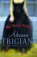 Big Cherry Holler Big Stone Gap Novel