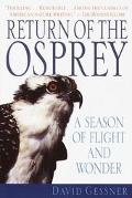 Return of the Osprey A Season of Flight and Wonder