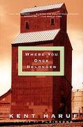 Where You Once Belonged A Novel