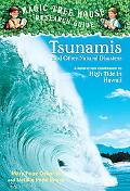 Tsunamis And Other Natural Disasters A Nonfiction Companion to High Tide in Hawaii