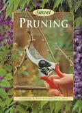 Pruning - Susan Lang - Paperback - 4TH