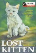 Lost Kitten - Emily Costello - Paperback