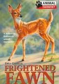 Frightened Fawn, Vol. 8 - Emily Costello - Paperback