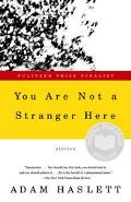 You Are Not a Stranger Here Stories
