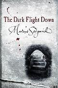 Dark Flight Down