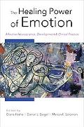 The Healing Power of Emotion: Affective Neuroscience, Development & Clinical Practice (Norto...