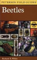 Field Guide to the Beetles of North America