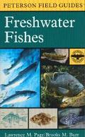 Field Guide to Freshwater Fishes North America, North of Mexico