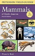 Field Guide to Mammals of North America