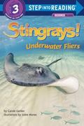 Stingrays! : Underwater Fliers
