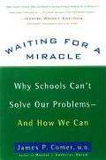 Waiting for a Miracle: Why Schools Can't Solve Our Problems-and How We Can