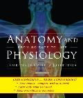 Anatomy and Physiology (Looseleaf)
