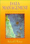 Data Management An Organizational Perspective