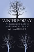 Winter Botany An Identification Guide to Native Trees and Shrubs